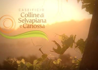 Caseificio Colline di Canossa Video di presentazione